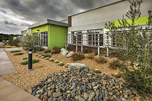 The IHS Desert Sage Youth Wellness Center in Hemet, Calif., include xeriscaping to minimize water use by planting indigenous species that are compatible with the local climate to reduce or eliminate the need for irrigation. This is one of many IHS efforts to reduce our impact on the environment.