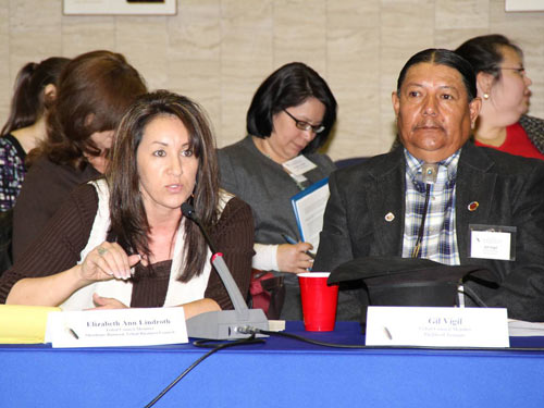 Speaker at the HHS Tribal Budget Formulation and Consultation Session